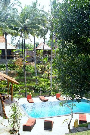 Narasoma Homestay: View from breakfast table