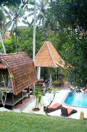 Narasoma Homestay: Some shade areas near the pool and perhaps yoga...