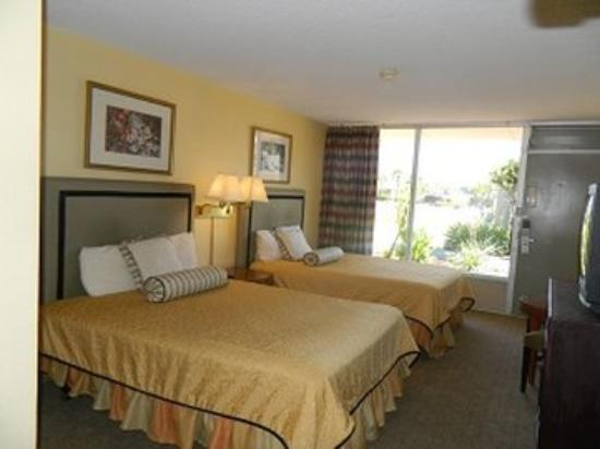 Palms Inn: Room