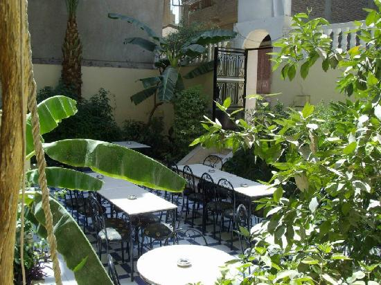 Photo of Little Garden Hotel Luxor