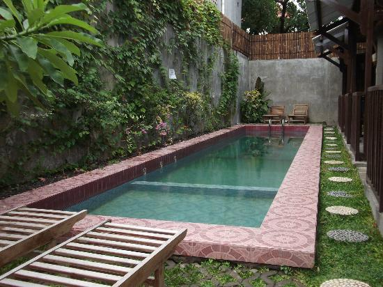 Small pool good picture of venezia garden yogyakarta for Small swimming pools for gardens