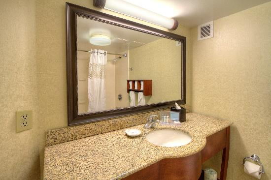 Hampton Inn Raleigh/Cary: Guest Bathroom