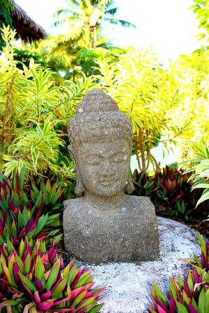 Pranamar Villas and Yoga Retreat: buddah