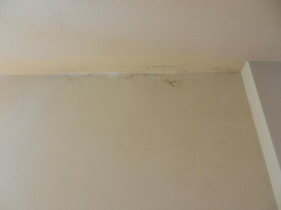 Jardin Escondido: Mold/stained walls