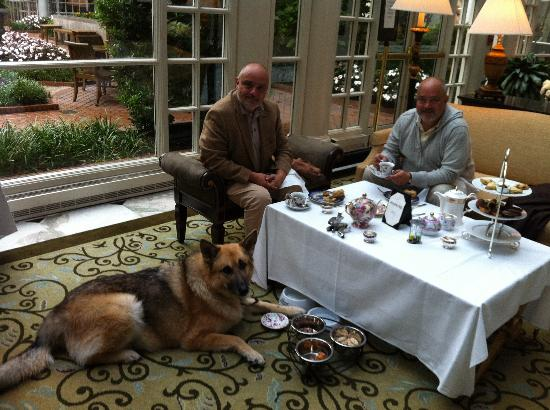 The Fairmont Washington DC: Pinkies and Paws, High Tea with our dog.