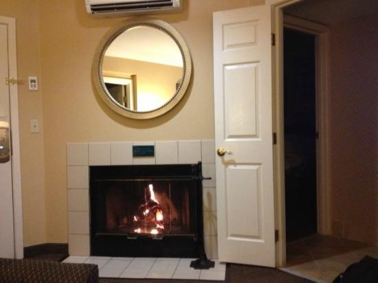 Homewood Suites by Hilton San Jose-Silicon Valley: Fireplace