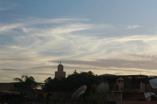 Riad Aloes: The Koutoubia, from the terrace