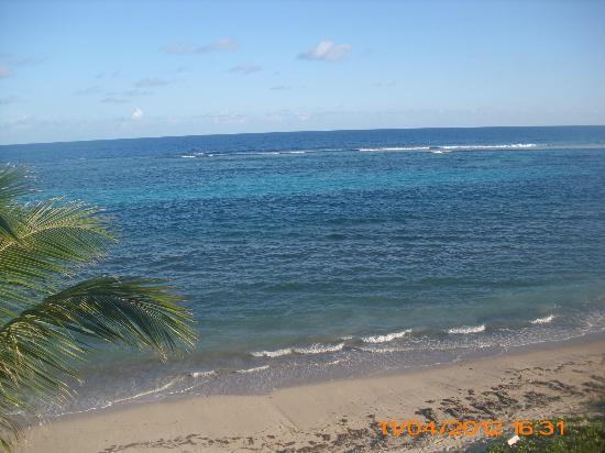 Divi Carina Bay All Inclusive Beach Resort: View from our roomo