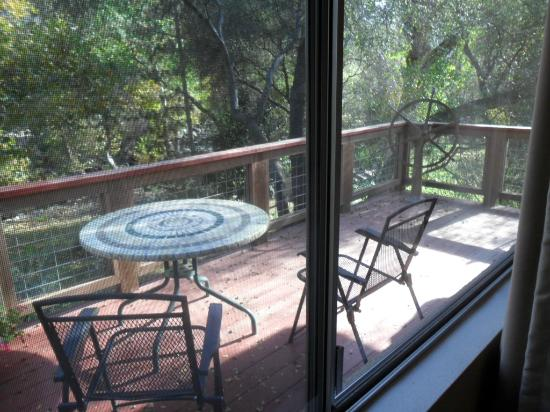 Sequoia River Dance B&B: 2nd floor deck outside window. Overlooks the river.