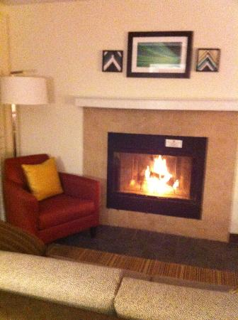 Residence Inn Buffalo Amherst: Fireplace in livingroom