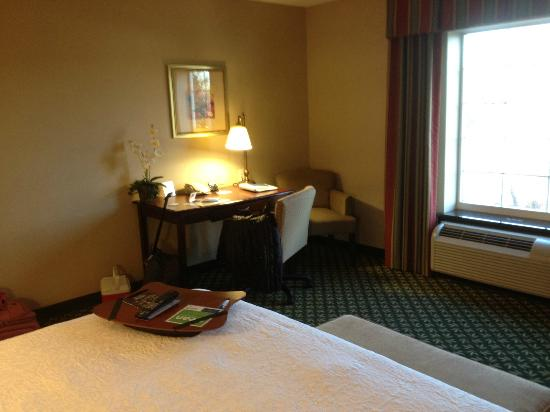 Hampton Inn &amp; Suites Berkshires: room