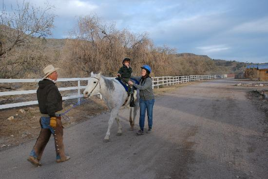 Meadview, AZ: horse back riding