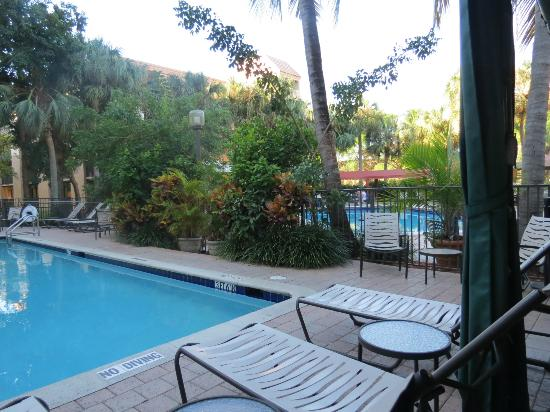 Hampton Inn & Suites Ft. Lauderdale-Airport: pool