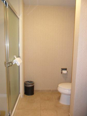 Hampton Inn: bagno