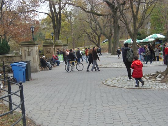 Top 30 things to do in new york city ny on tripadvisor for Things to do in central park today