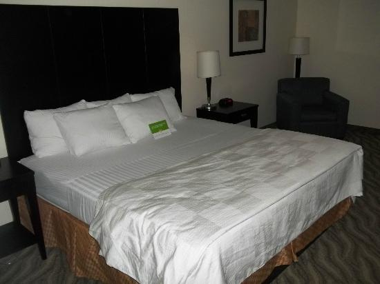 La Quinta Inn & Suites Glen Rose: King Bed Room