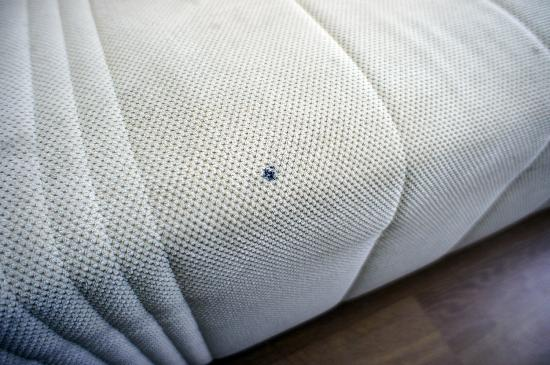 Park Plaza Orchid Tel Aviv: The sofa in the suite was a little grubby and stained.