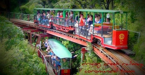 Photo of Coromandel TOP 10 Holiday Park