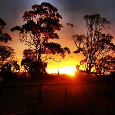 Coopers Shoot, Australia: Sunset @ Four Winds.