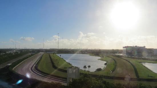 El Palacio Sports Hotel & Conference Center: Early morning view