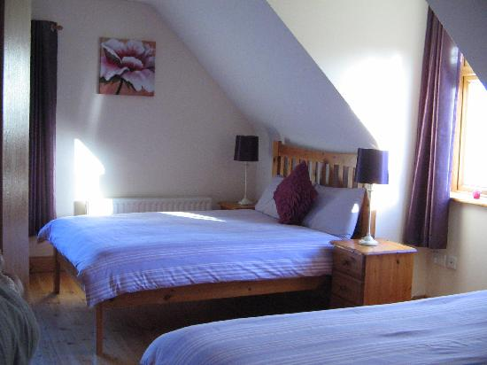 Carriganne Bed and Breakfast: Family Room
