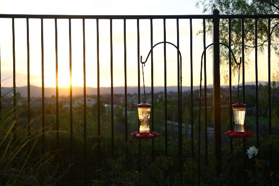 Casa Bella Sera - Private Home Stay: sunset in the back yard (hummingbirds do come and visit!)
