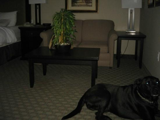 La Quinta Inn & Suites Paso Robles: Sitting area