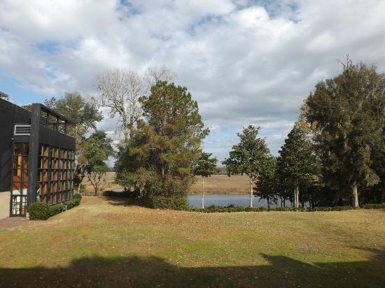 Inn at Middleton Place: View of the Ashley River from our second floor room