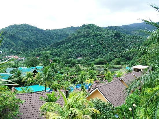 88 Hotspring Resort Photo: base of mount makiling