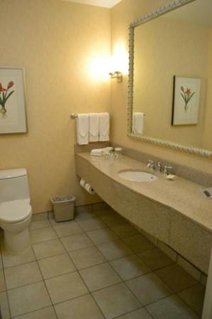 Hilton Garden Inn Ottawa Airport: large bathroom with ample counter space