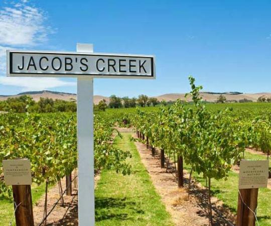 Half Day Wine Tours Adelaide