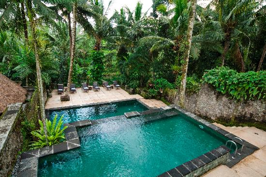 Wapa di Ume Ubud Resort and Spa: Main Pool