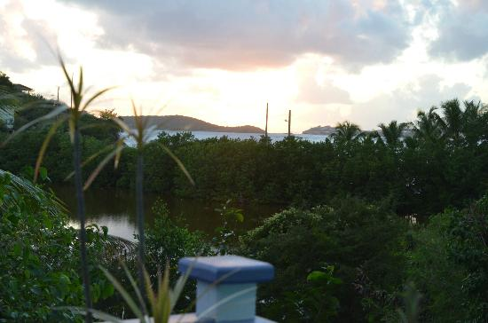 Garden by the Sea B&B: The Audubon Property and beyond