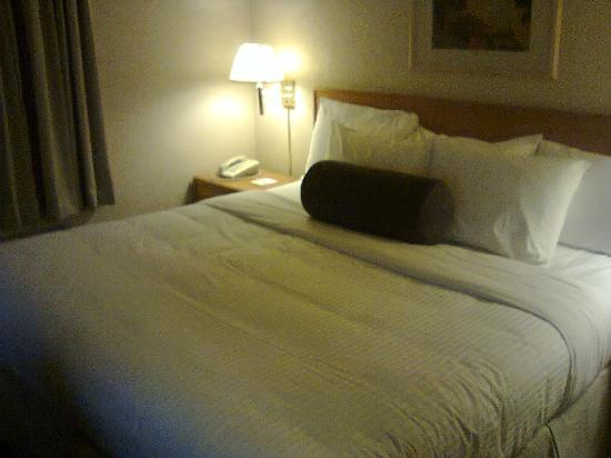 Days Inn Calgary Airport: King Bed