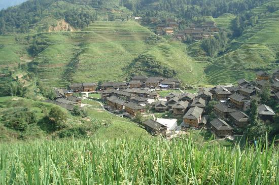 Xiyang County, Cina: Dazhai rice terraces