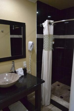 Everglades City Motel: bathroom1