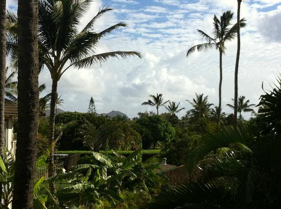The Villas at Poipu Kai: Grounds on the way to the beach