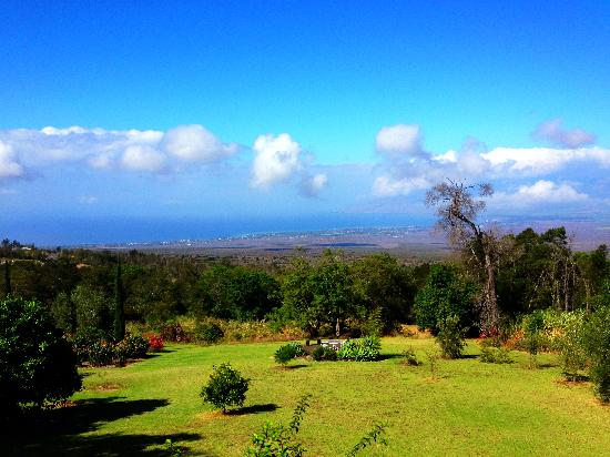 Maui Moonlight Garden: Beautiful grounds and view