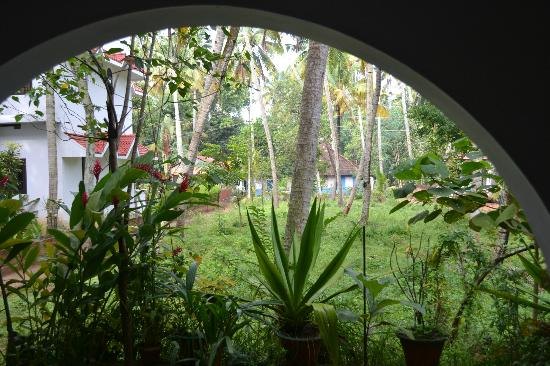 Jicky's Rooms: looking out from the veranda