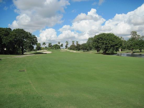 Doral Golf Resort and Spa: One of the beautful holes at Doral.