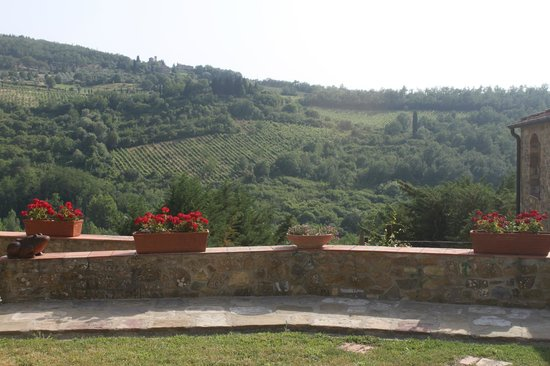 Agriturismo Podere Felceto