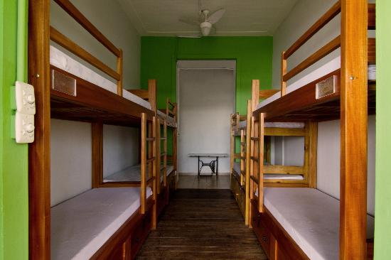 Terra Brasilis Hostel: Dorm