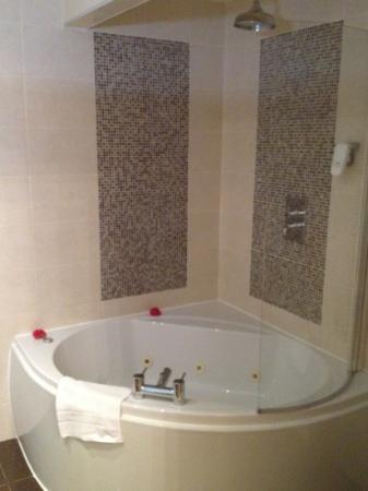Grand St Leger Hotel: room102 bath/shower