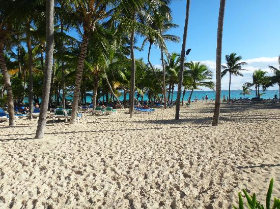 Riu Palace Punta Cana: view from beach entry
