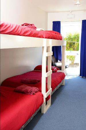 The Fat Cod Backpackers: Girls 4 bed dorm