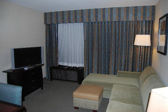 Embassy Suites Fort Worth Downtown: Living Room