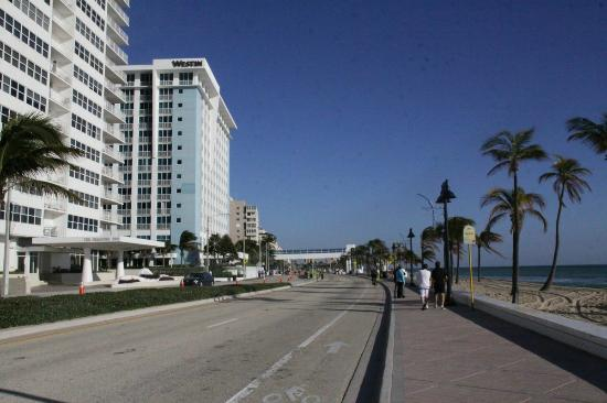 A1A - very close to the Alhambra Beach Resort