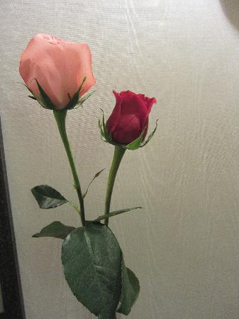 JW Marriott Hotel Quito: Fresh rosebuds given at night.