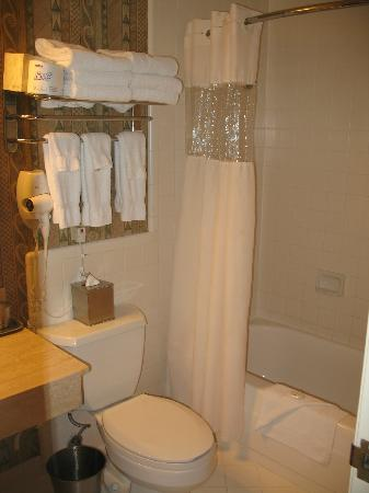 Catamaran Resort Hotel: Bathroom