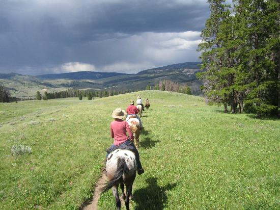 Nine Quarter Circle Ranch: you get to go on 2 trail rides a day - each different